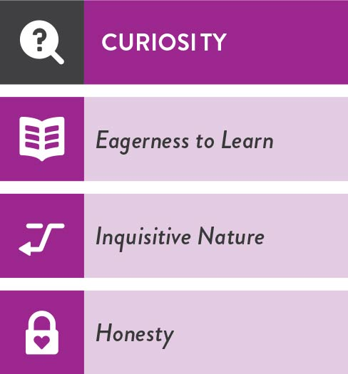 i4-Neuroleader-Model-Curiosity