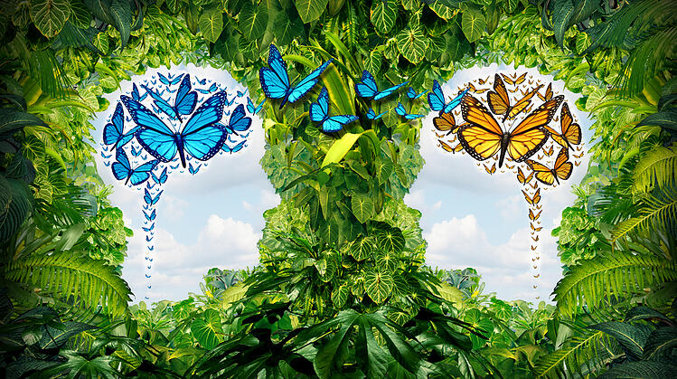 The-Butterfly-Effect-And-The-Impact-On-Your-Business-World