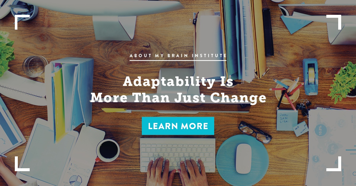 Adaptability Is More Than Just Change