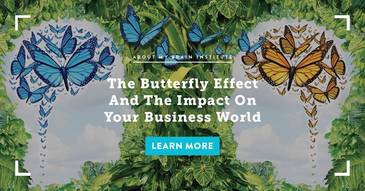 The Butterfly Effect And The Impact On Your Business World