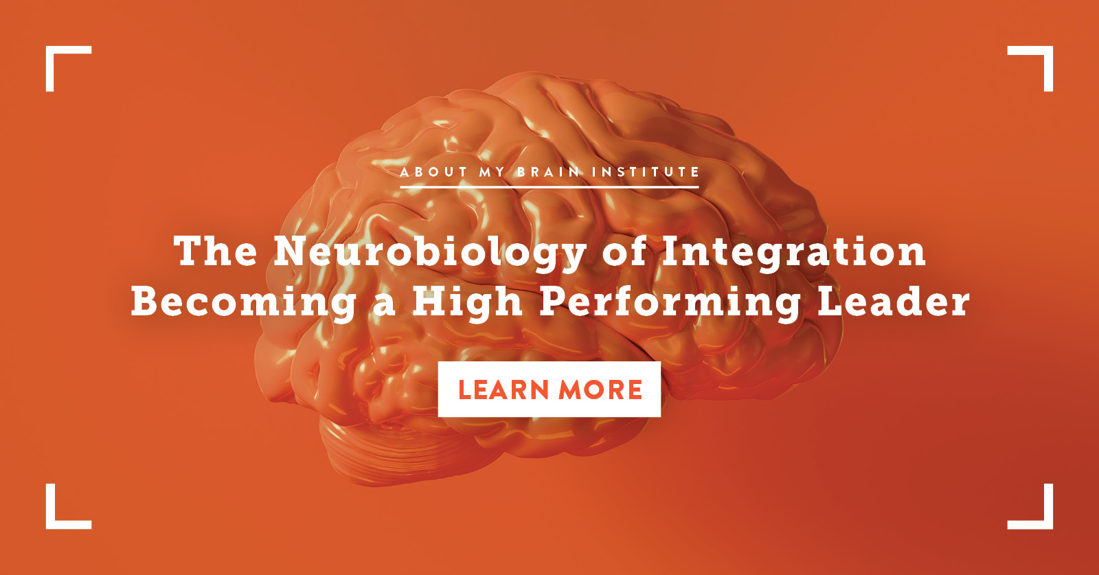 The Neurobiology of Integration - Becoming a High Performing Leader