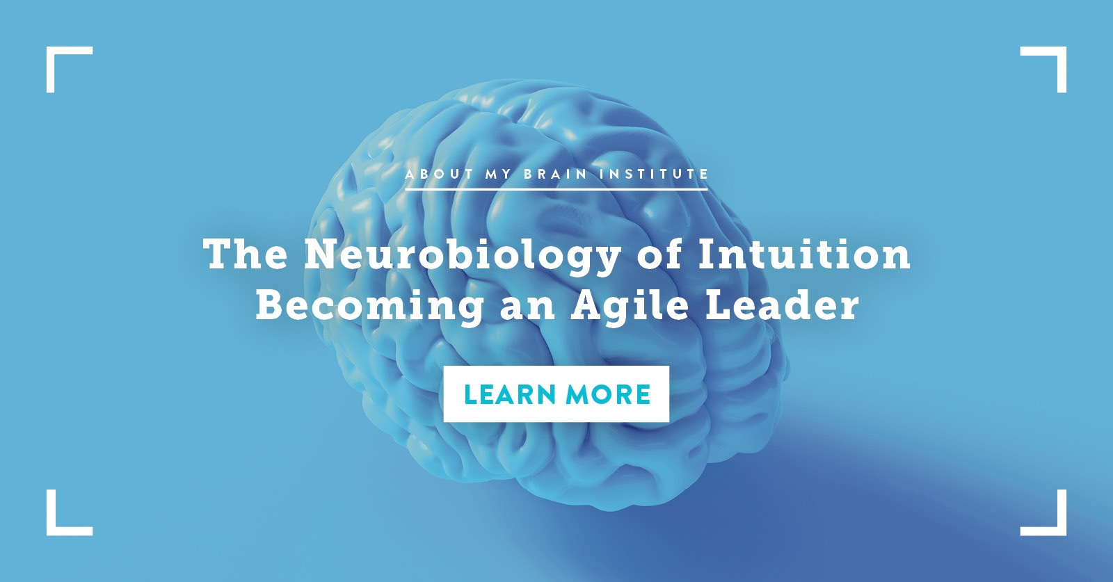 The Neurobiology of Intuition - Becoming an Agile Leader