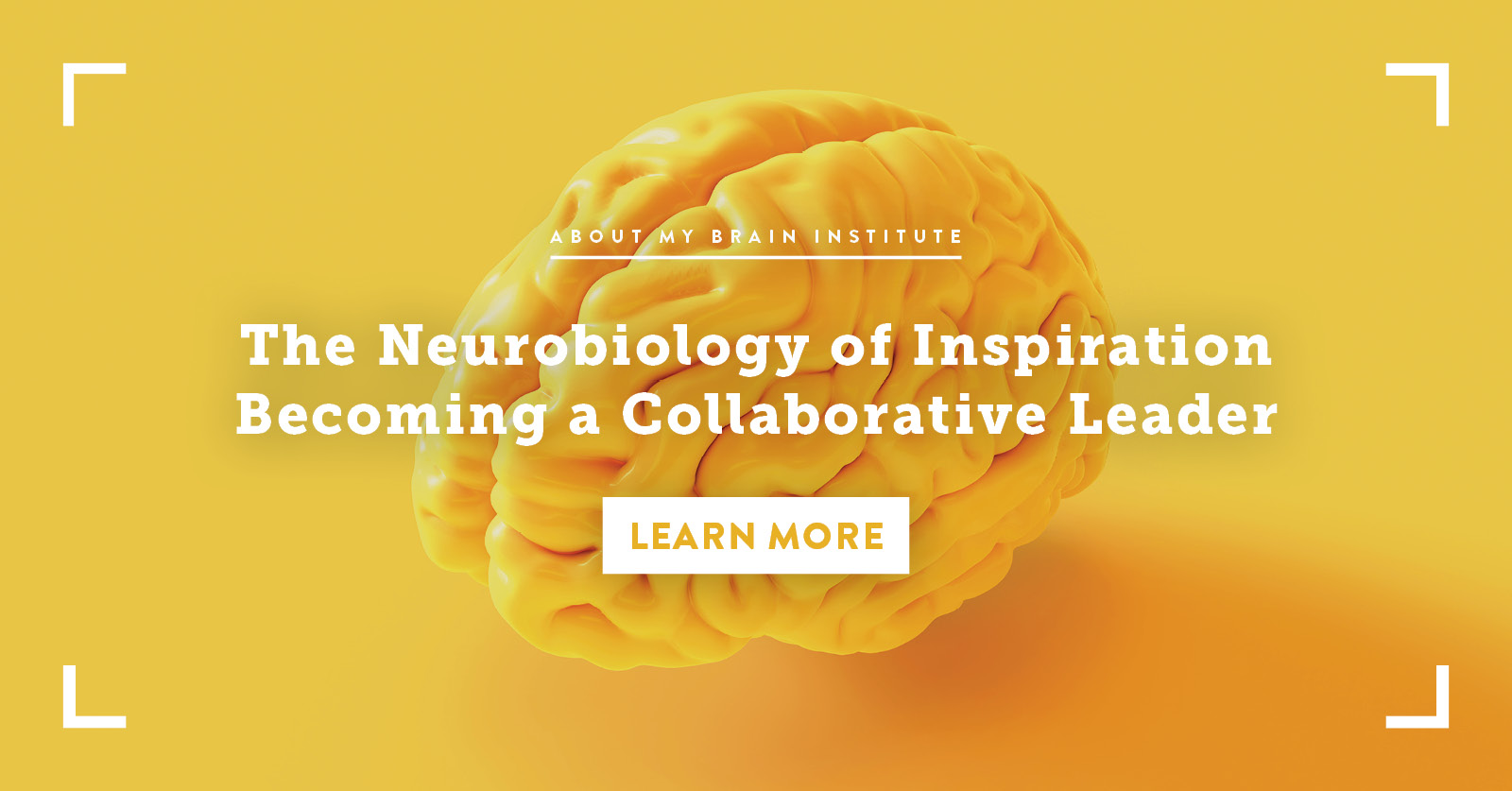 The Neurobiology of Inspiration - Becoming a Collaborative Leader