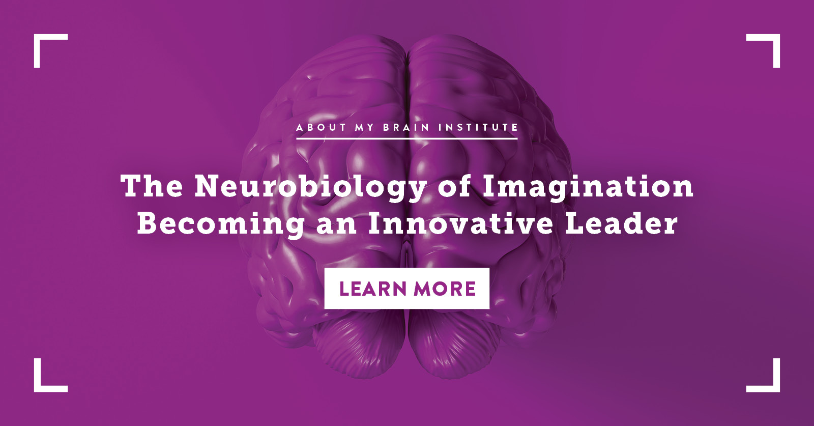 The Neurobiology of Imagination - Becoming an Innovative Leader
